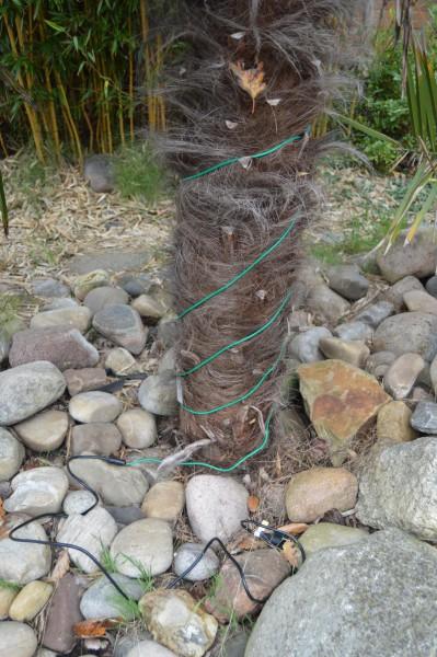 Pflanzenheizkabel standard an/aus + 2 m Zuleitung