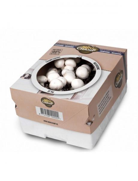 Champignon -weiß- Pilz Zuchtset 7,5 Liter