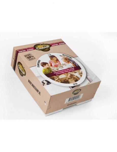 Austernpilz -grau- Pilz Zuchtset 7,5 Liter